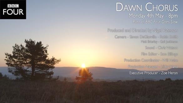 dawnchorus